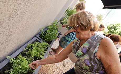 Check out the new community garden of ShoppingSantaÚrsula