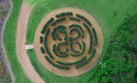 Labirinto de arbustos no formato da logo Multiplan